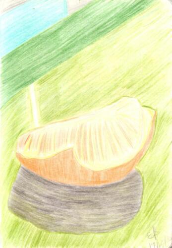 Mandarin Segment in Skin